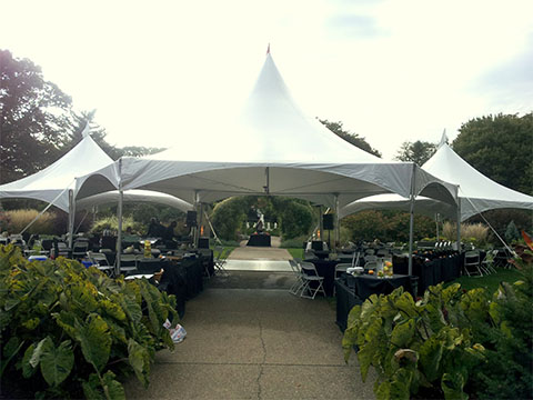 20x20 tent with Hex tent