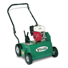Rental store for LAWN DETHATCHER in Peoria IL